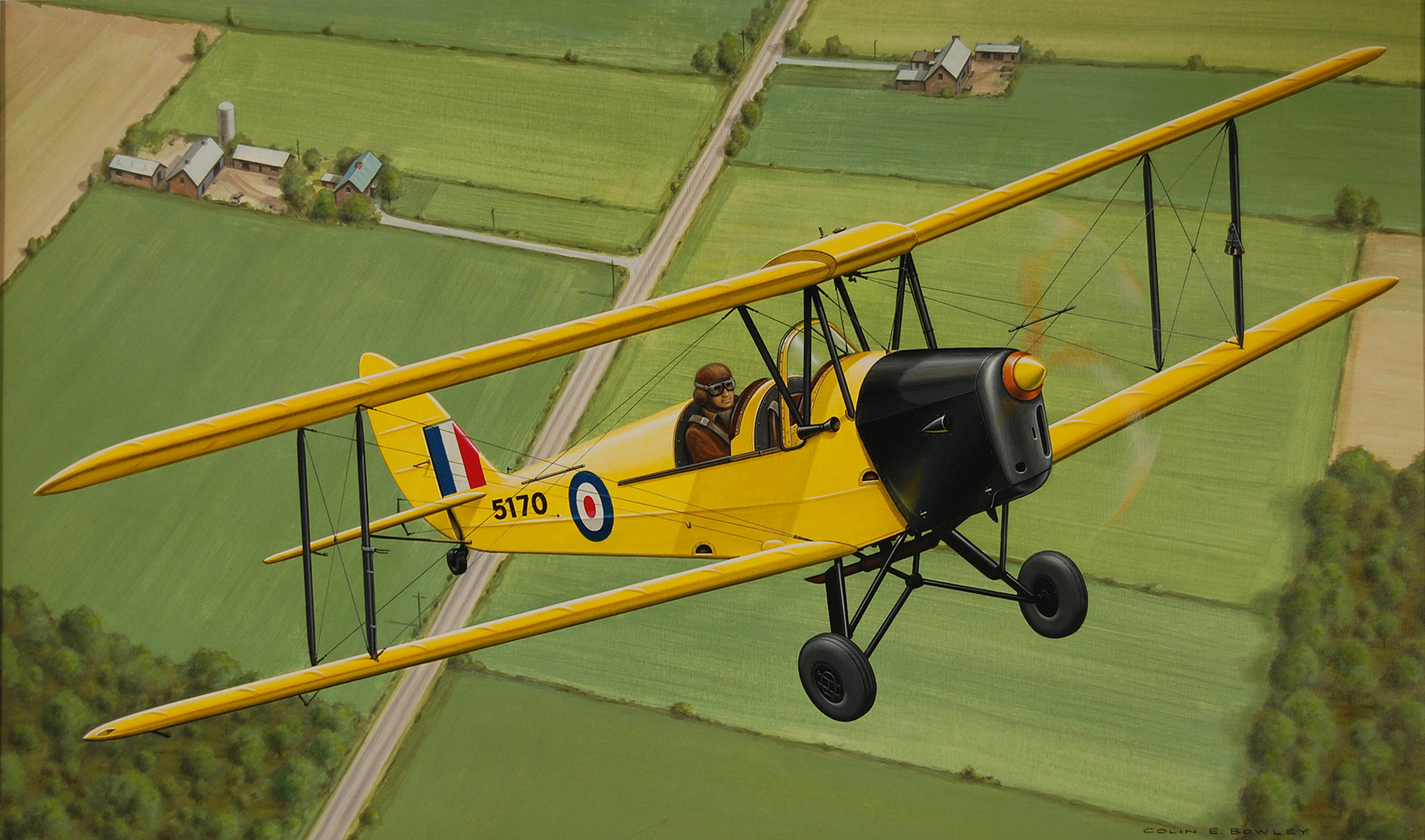 """The deHavilland DH82A Tiger Moth"" by Colin Bowley"