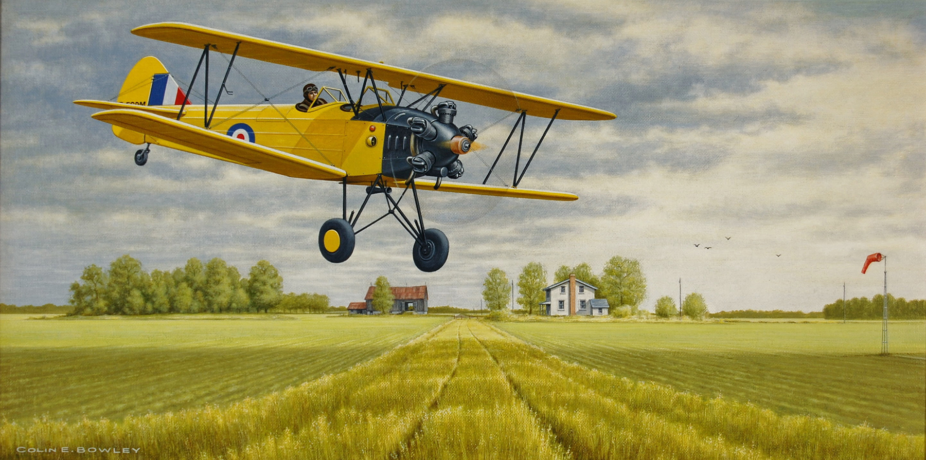 """The Fleet 16B Finch"" by Colin Bowley"