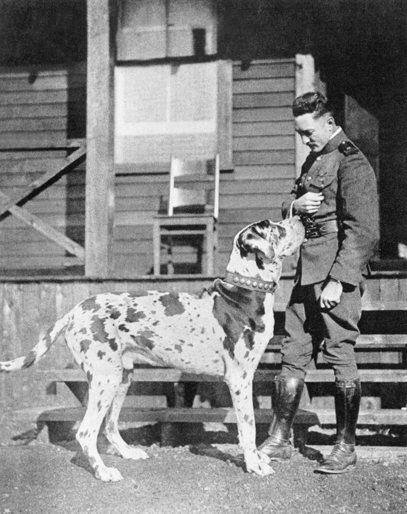 In an undated photograph, Violet, the Great Dane mascot of U.S. Naval Air Station Halifax, Nova Scotia, and Lieutenant Richard Evelyn Byrd Jr., USN, the naval station's commanding officer, discuss the ownership of something in the lieutenant's hand. PHOTO: Courtesy of Shearwater Aviation Museum