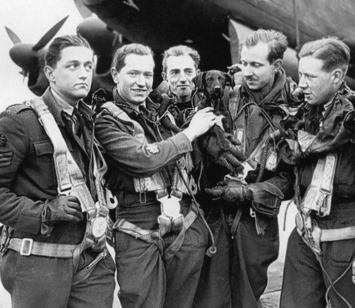 Five men wearing flying gear stand in a row in front of a Second World War aircraft. One is holding a young black labrador dog.